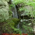alexander_waterfalls