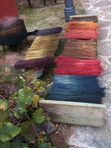 Broomcorn Dyed